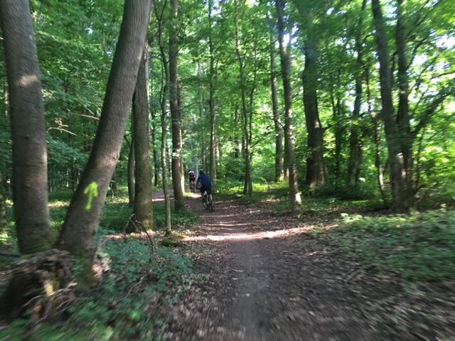 Traseu Skoda Green Challenge