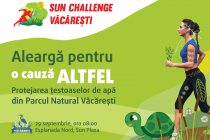 Sun plaza challenge